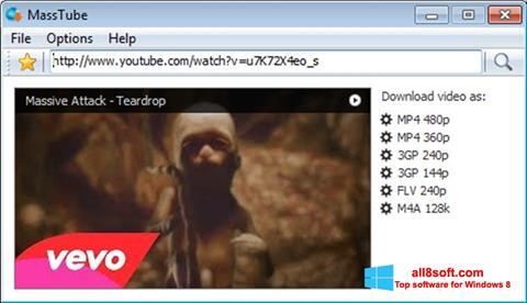 Στιγμιότυπο οθόνης MassTube Windows 8