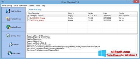 Στιγμιότυπο οθόνης Driver Magician Windows 8