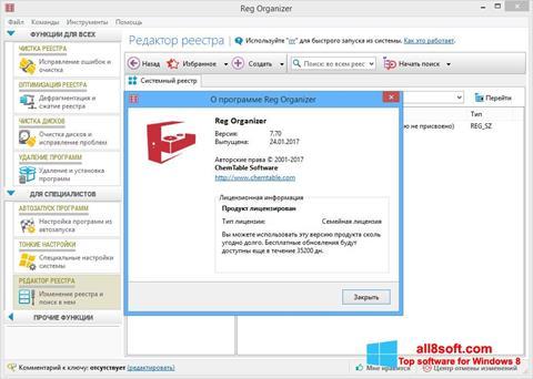 Στιγμιότυπο οθόνης Reg Organizer Windows 8