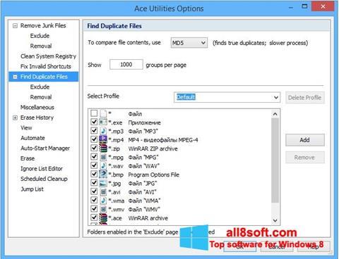 Στιγμιότυπο οθόνης Ace Utilities Windows 8