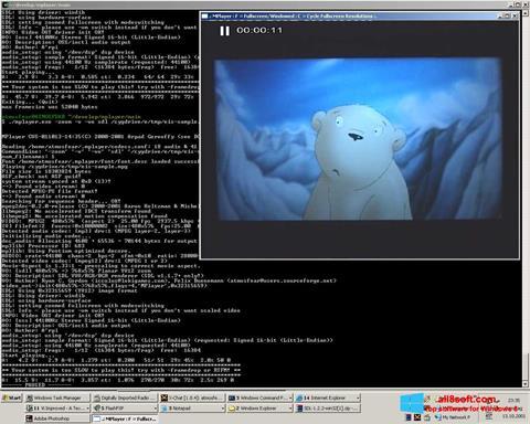Στιγμιότυπο οθόνης MPlayer Windows 8