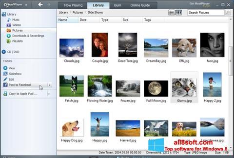 Στιγμιότυπο οθόνης RealPlayer Windows 8