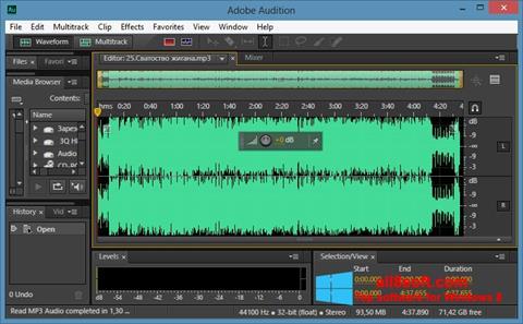 Στιγμιότυπο οθόνης Adobe Audition CC Windows 8