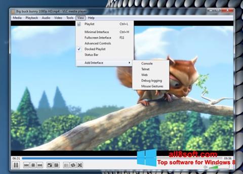 Στιγμιότυπο οθόνης VLC Media Player Windows 8